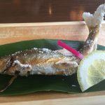 岐阜県郡上市「みやちか」天然鮎料理を自然を満喫しながら楽しめるお店
