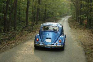 山の中を走る車