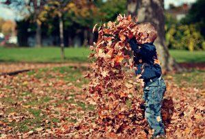 枯葉で遊ぶ園児