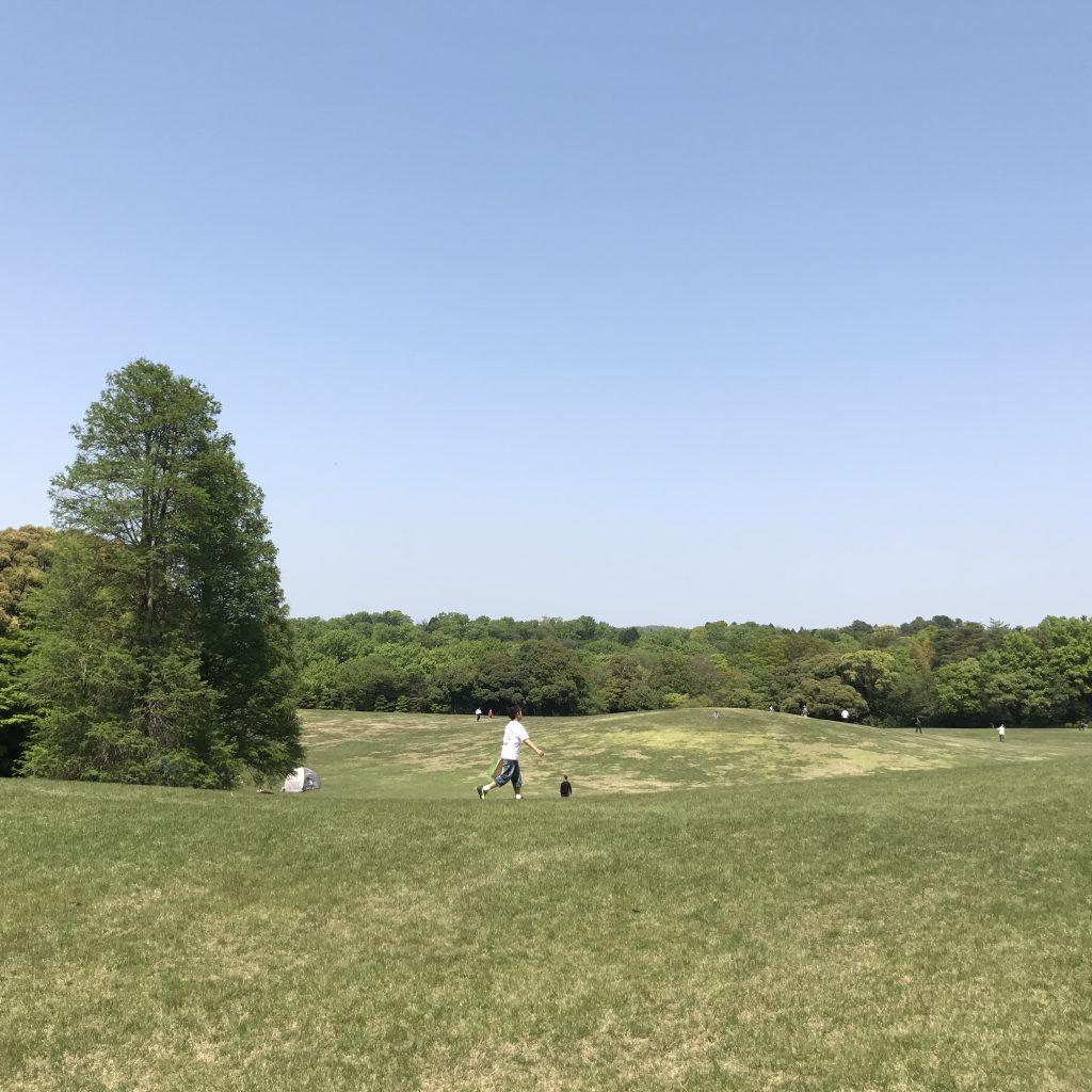 愛知県森林公園の植物園をまた散歩したい。自然に癒され、野生動物に驚きました。12
