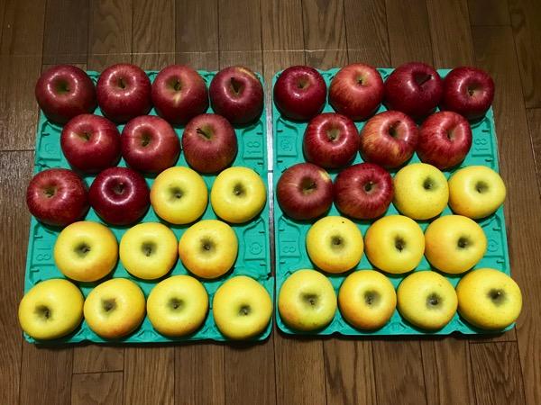 ふるさと納税のお礼の品でリンゴ10キロを注文してみた感想2